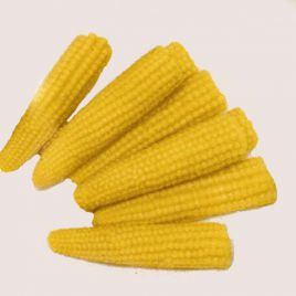 Миниголд семена мини-кукурузы сахарной (Moravoseed)