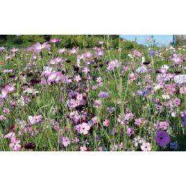 Деликейтс летние цветы семена цветочной смеси (Nova Flore)