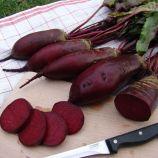 Ренова семена свеклы столовой (Moravoseed)