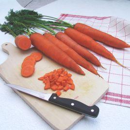 Тинга семена моркови Флакке (Moravoseed)