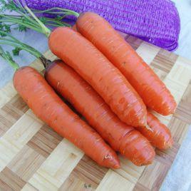 Кортина F1 семена моркови Флакке (Moravoseed)