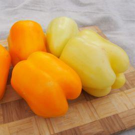 Тесла F1 семена перца сладкого тип Блочный среднего корот.куб. 220-240г. 10х9см св.зел./желт. (Moravoseed)