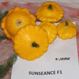 Сандес F1 семена патиссона (Semo)