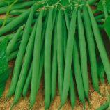 Гама семена фасоли (Semo)