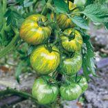 Зеленая Зебра семена томата индет. зеленого (SEMO)