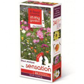 Сенсация гномики на 100 кв. м семена цветочной смеси (Nova Flore)