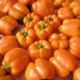 Орени F1 семена перца сладкого (Semo)
