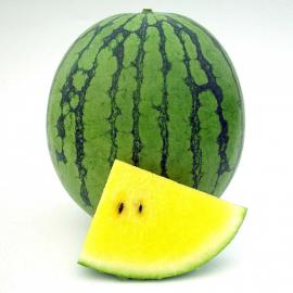 Примаголд F1 семена арбуза тип кр.св. раннего 60-65 дн. 3-4 кг желт. окр. (Semo)