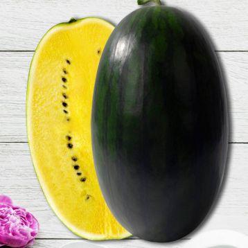 Шуга Еллоу F1 семена арбуза желт. мякоть (NongWoo Bio)