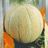 Канталупа семена дыни средней 1-1,5 кг окр. св.-бел./оранж. (Seedera)