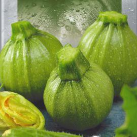 Пупсик семена кабачка раннего 35-40 дн. окр. 300-500 гр. зел. (Seedera)