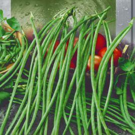 Анаконда вигна семена фасоли китайской черной (Seedera)