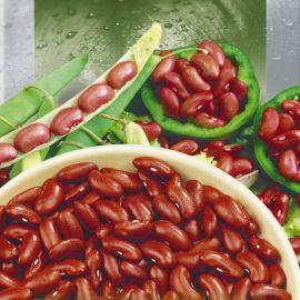 Калинка семена фасоли кустовой красной (Seedera)