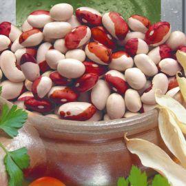 Красная шапочка семена фасоли кустовой красной с белым (Seedera)