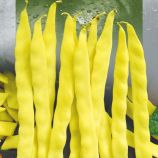 Золотой нектар семена фасоли спаржевой вьющейся желтой (Seedera)
