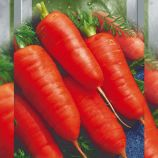 Каротель семена моркови средней 90-120 дн. 14-16 см 100-130 гр. (Seedera)
