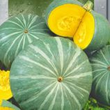 Лечебная семена тыквы 4-7 кг окр.-припл. зелен. (Seedera)