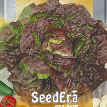 Четыри сезона семена салата тип Маслянистый крас. (Seedera)