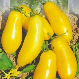 Банан золотой семена томата индет. среднераннего перцев. 100-140г желт. (Seedera)