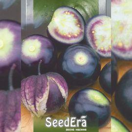 Пурпурный семена физалиса (Seedera)
