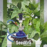 Боливийский черный семена табака курительного (Seedera)