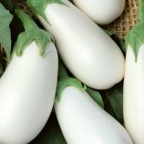 Айсберг семена баклажана среднего 115-125 дн. 16-20см удл.груш. 170-250гр. бел. (Семена Украины)