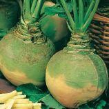Вильгельмсбургская семена брюквы (Семена Украины)