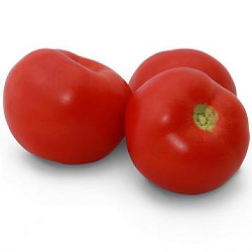 КС 2910 F1 (KS 2910 F1) семена томата дет. среднего 110-115 дн. слив. 100-120 гр. (Kitano Seeds)