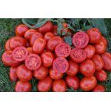 1311 F1 насіння томата дет. середнього злив. 85-95гр (Lark Seeds)