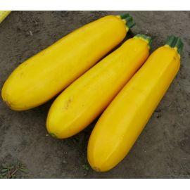 Голдстика F1 семена цуккини раннего 45 дн. желт. (Lark Seeds)