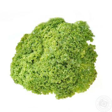 Криска семена салата тип Лолло Бионда 1,0-1,1 кг драж. (Isi Sementi)