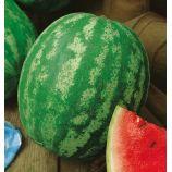 Княжич семена арбуза раннего 4-6кг окр. (Украина СДБ)