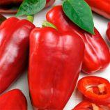 Красный Великан семена перца сладкого среднего 140-160 дн. 500-800 гр. 20-30 см 8-10 мм красн. удл.-кубовидн. (Яскрава)