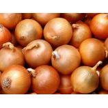 Каратальский семена лука репчатого раннего 50-120 гр. окр-припл. (Яскрава)