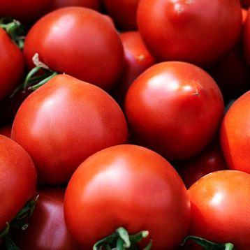 Меланет F1 (Мелонет F1) семена томата полудет. 160-180 гр. с носиком. (Syngenta)