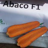 Абако F1 семена моркови Шантане (2,2-2,4) (Seminis)