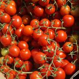 Ахико F1 семена томата дет. черри (Agri Saaten)