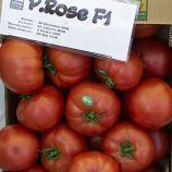 Пинк Роуз F1 семена томата индет. раннего 100-110 дн. окр.-прип. 250-270г роз. (Yuksel)