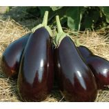 Царская икра семена баклажана раннего 90-110 дн 200-500 гр грушев (GL Seeds)
