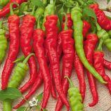 Бараний Рог семена перца горького раннего 85-90 дн 18-20 см свзел/красн (GL Seeds)