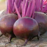 Подзимняя А 474 семена свеклы столовой средней 95-105 дн. 200-300 гр. окр.-припл. (GL Seeds)