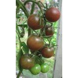 Блек черри семена томата индет черри раннего 15-35 гр вишн (GL Seeds)