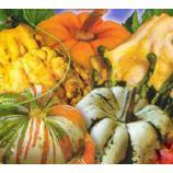 Фаберже семена тыквы мини смесь (GL Seeds)