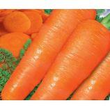 Сластена F1 семена моркови Флакке средней 75-90 дн. 18-20 см 80-150 гр. (GL Seeds)