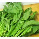Малахит семена шпината (GL Seeds)
