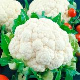 Белая королева семена капусты цветной ранней 60-70 дн. 1,1-1,4 кг бел.(GL Seeds)