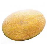 Дана семена дыни средней 89-91 дн. овал. 2-3,5 кг (GL Seeds)