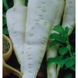 Гормон семена пастернака 70-110 дн. (Семена Украины)