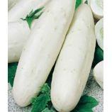Белый ангел F1 семена огурца партенокарп. среднераннего 50-55 дн. 18-20 см (Семена Украины)