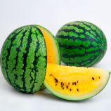 ЛС 1809 F1 (LS 1809 F1) семена арбуза тип кр.св. раннего 5 кг овал. желт. (Lucky Seed)